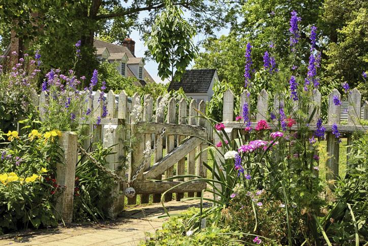 Schöner Garten mit offenen Tor