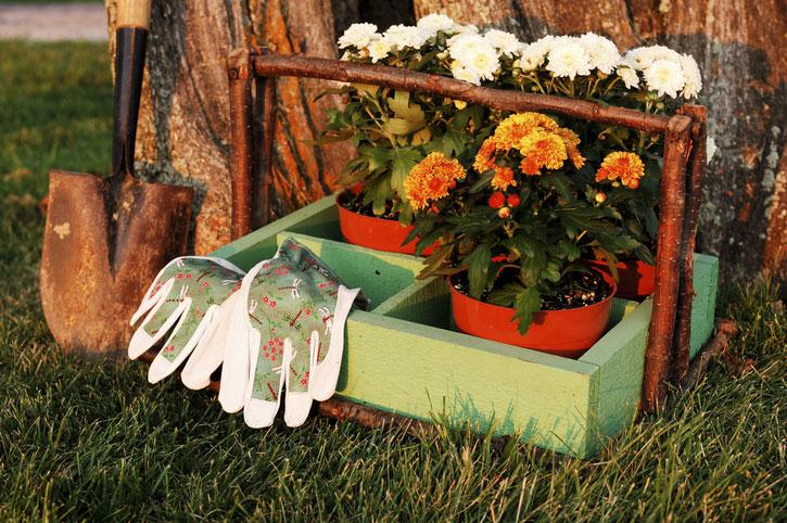 Gartenpflege Handschuhe Blumentöpfe